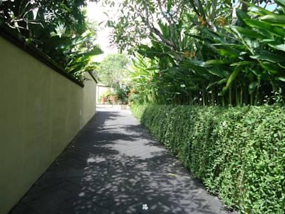 I Love Bali - Pat Mase (13)