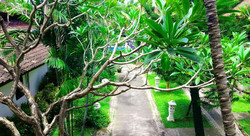 Legian Paradiso Hotel - I Love Bali (25)