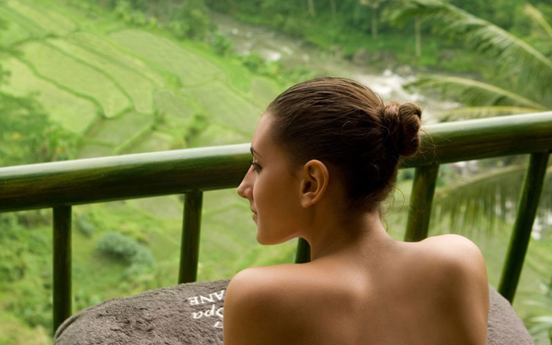 Kupu kupu barong - I Love Bali (17)