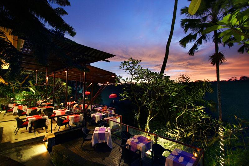 Kupu kupu barong - I Love Bali (5)