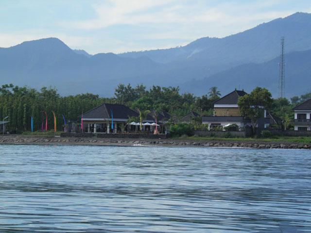 Kelapa Lovina - I Love Bali (4)
