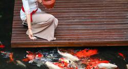 Mercure kuta - I Love Bali (30)