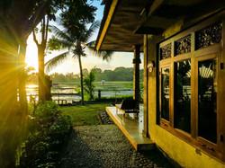 Green field Ubud - I Love Bali (65)