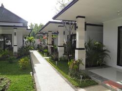 Kelapa Lovina - I Love Bali (3)