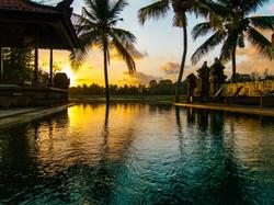 Green field Ubud - I Love Bali (81)