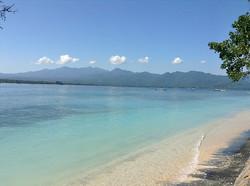 Turtle beach - I Love Bali (16)