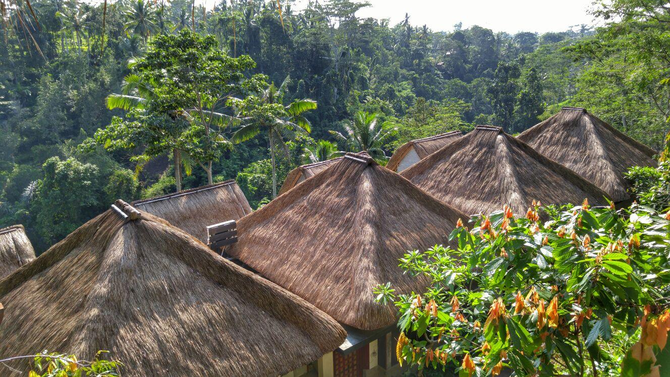 Tejaprana - I Love Bali (2)