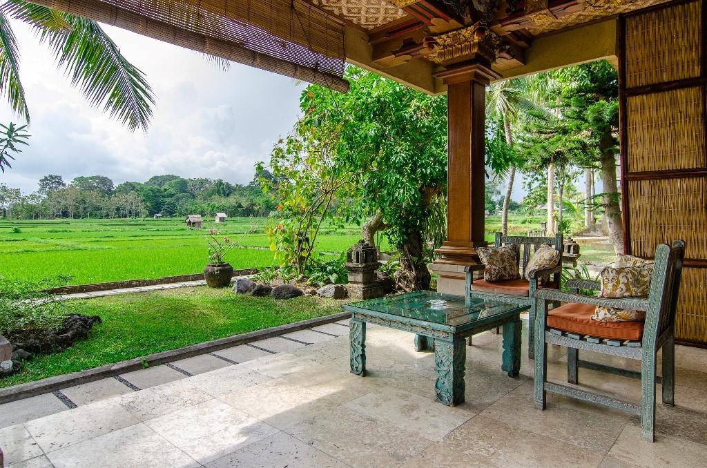 Green field Ubud - I Love Bali (56)