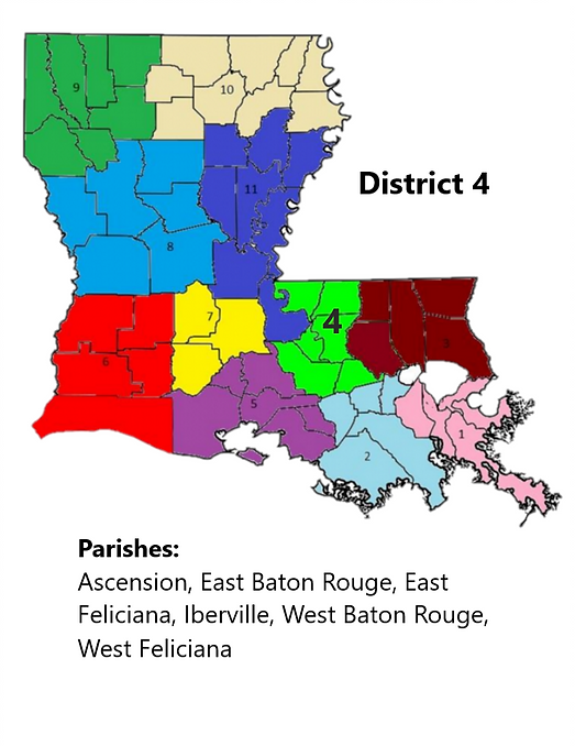 District 4 Info.png