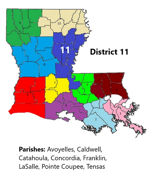 District 11 Info.png