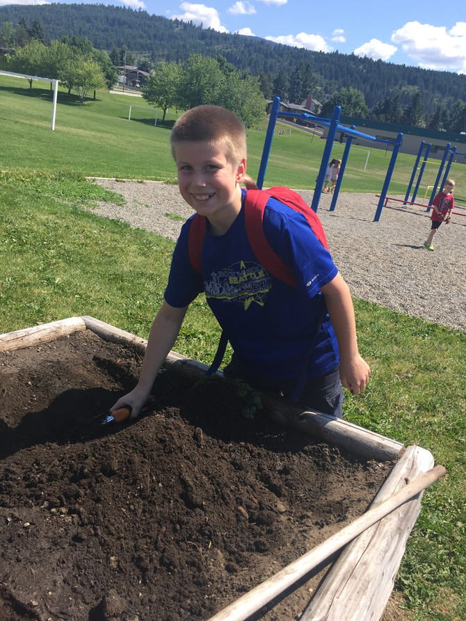 The Program that Keeps Growing... Grandma D's Garden to Plate Program 2016-2017