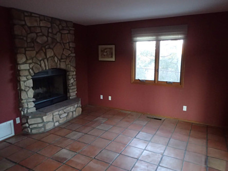 Before Fireplace Remodel