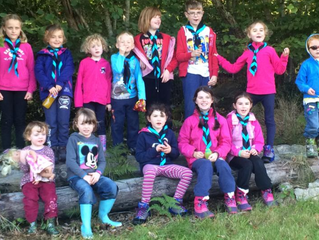 Fingal Scout County Camp 2014