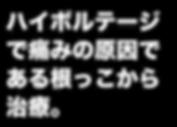 なす_TOPコメント_ハイボルテージ.png