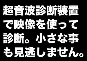 なす_超音波_2.png