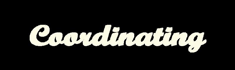 logo_コーディネイト.png