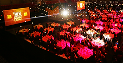 awardsMOH.png