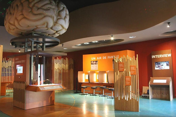Morpho-salle-interactive-paleosite-saint