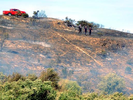 (18/07) Cuxac-d'Aude : la disqueuse met le feu à 8 ha de broussailles dans le quartier résidentiel