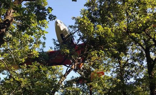 (17/07) Aude : un pilote de planeur finit dans les arbres d' une forêt en atterissage d' urgence.