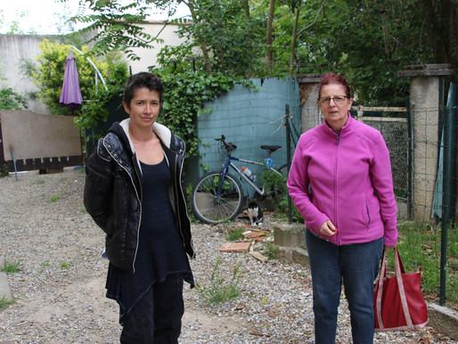 (28/05)Limoux : une ex-locataire insouciante met en péril 20 chats et les comptes d' une association