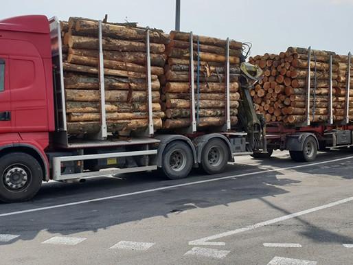 (05/07) Aude : 11 infractions relevées sur un poids lourd sur l' A61
