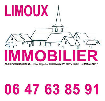 LOGO LIMOUX IMMOBILIER.jpg