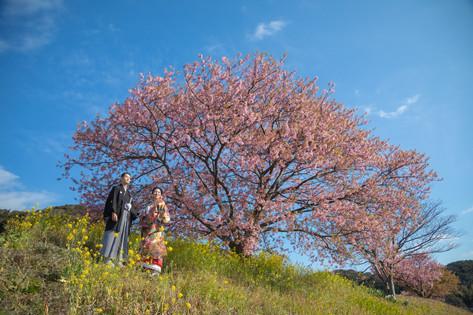富士山周辺_210506_1.jpg