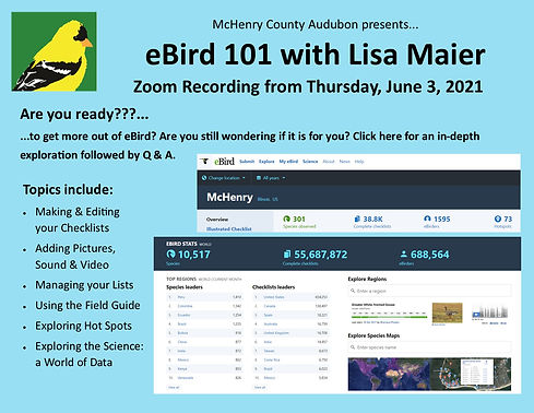 eBird 101 for Zoom Post to Webpage.jpg