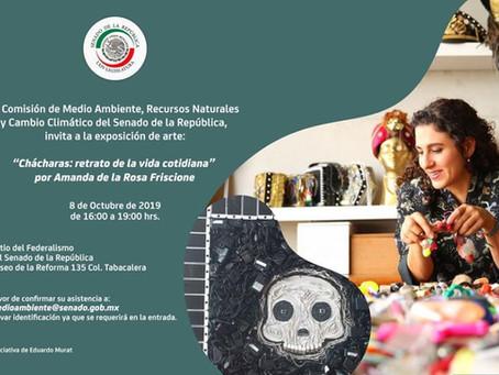 EXPOSICIÓN EN EL SENADO DE LA REPÚBLICA