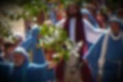 Jesus-donkey-3-300x199_edited.jpg