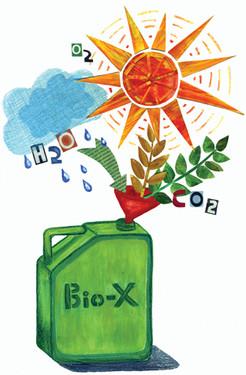 bioenergiaHannaVaskivuo.JPG
