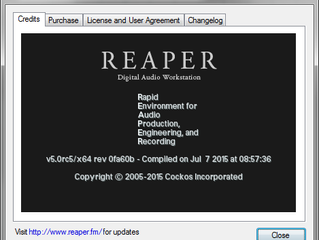 What REAPER means