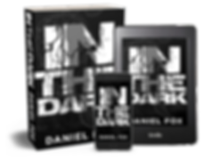 In The Dark - 3D Cover - all formats.png