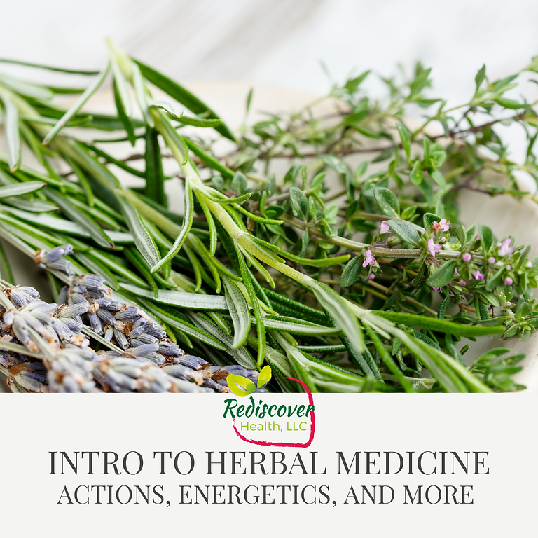 Intro to Herbalism: Actions, Energetics, and More!
