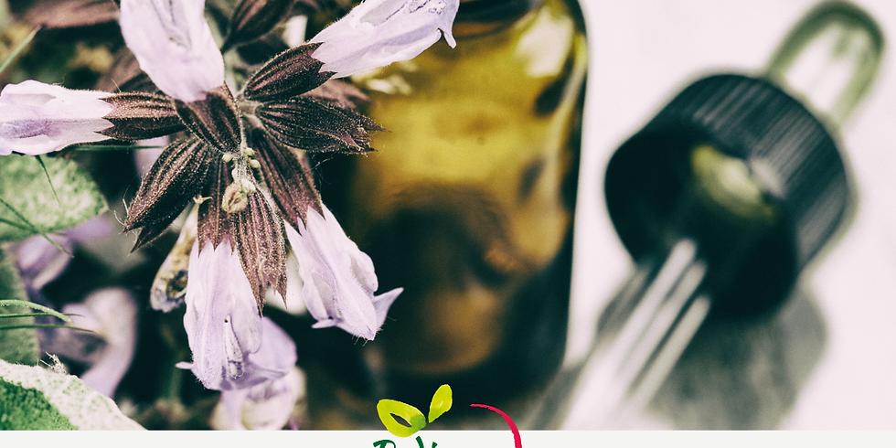Intro to Herbalism: Herbal Medicine Making