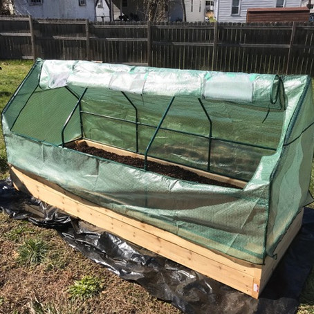 Building raised beds is easier than blogging!
