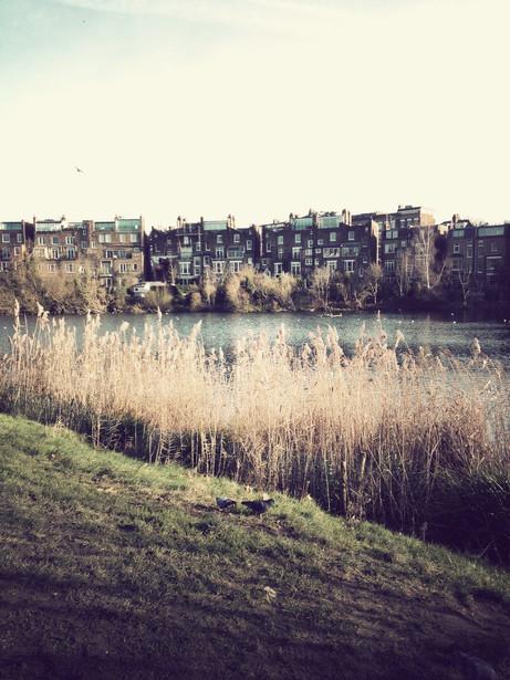 Now in London #2 - Hampstead Heath Park