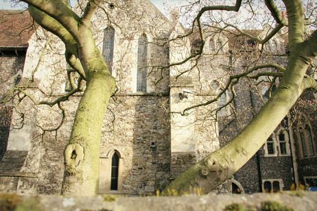 Canterbury et Whitstable #1 - Vieilles pierres