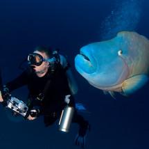 JaneMorgan_Divers1.jpg