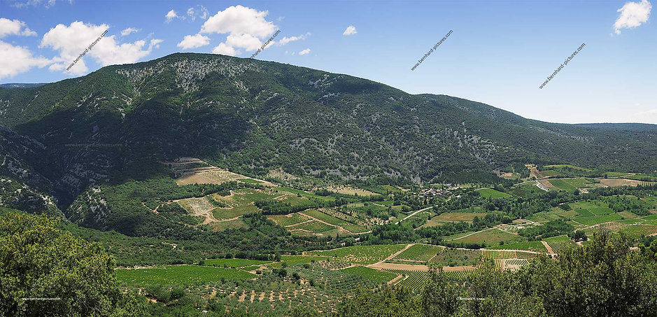 vallee_brantes_agriculture_pano_bp_01.jp