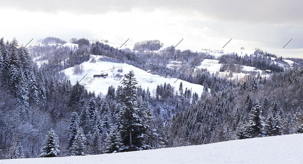 Heurueti_kaltenbrunnen_winter_pano_web_0
