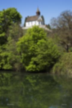 rheinau_bergkirche_hochformat_MG_5982_01