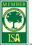 ISA Member.jpg