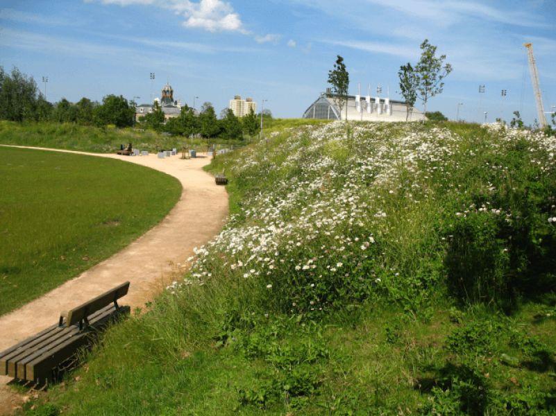 Three mills green - Churchman Landscape Architects