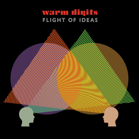 NOW PLAYING: FLIGHT OF IDEAS BY WARM DIGITS...