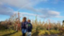 Appels plukken 2.jpg