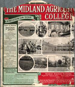 Acc 2062 Midland Dairy Poster.jpg