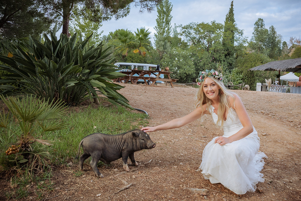 Bride at her mountain wedding playing with the farm animals
