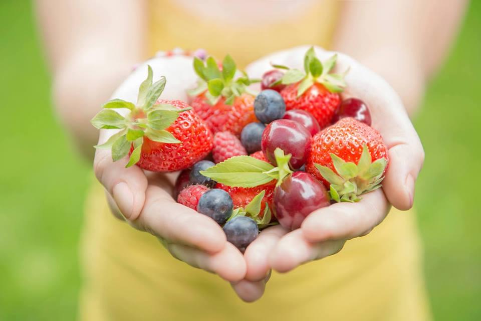 frugt i haender.jpg
